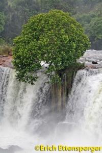 Cachoeira da Velha