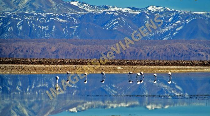 Deserto do Atacama: milhares de estrelas e cenários deslumbrantes
