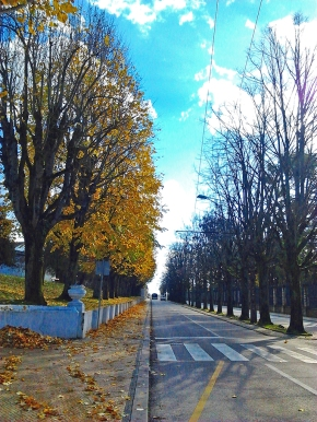 Coimbra, outono.