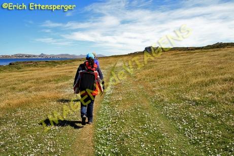 Trilha da Ilha Falkland Leste