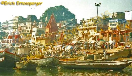 Blog Varanasi 5