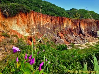 As falésias formadas por rochas sedimentares da Formação Barreiras/ Die Klippen von Sedimentgesteinen von Barreiras gebildet/ The cliffs formed by sedimentary rocks of Barreiras