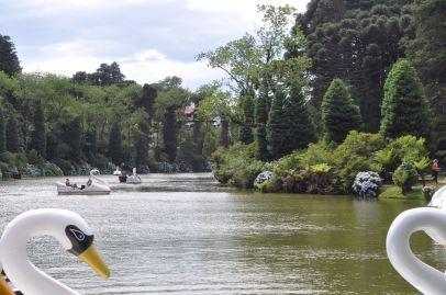 Lago Negro / lleiner See Lago Negro / the lake Lago Negro