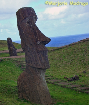 Moai do local conhecido como Fábrica de Moais / Moai an einem Ort bekannt als Moais Fabrik / Moai at the place known as Moais Factory