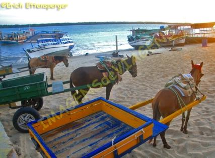 O táxi de Galinhos.../ Taxi in Galinhos