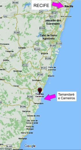 Localização de Tamandaré e Carneiros/Location of Tamandaré and Carneiros.Fonte/source: Google Map