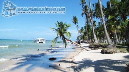 Praia dos Carneiros/Strand Praia dos Carneiros/Carneiros Beach. Fonte/source: http://www.praiadetamandarecarneiros.com/tamandare_carneiros_fotos.html