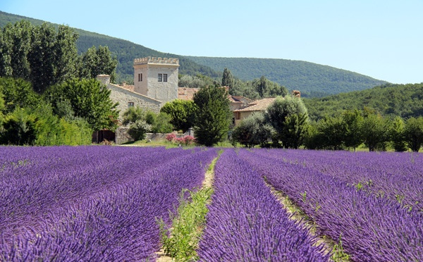 O PERFUME DE PROVENCE/DER DUFT DER PROVENCE/THE FRAGRANCE OF THE PROVENCE