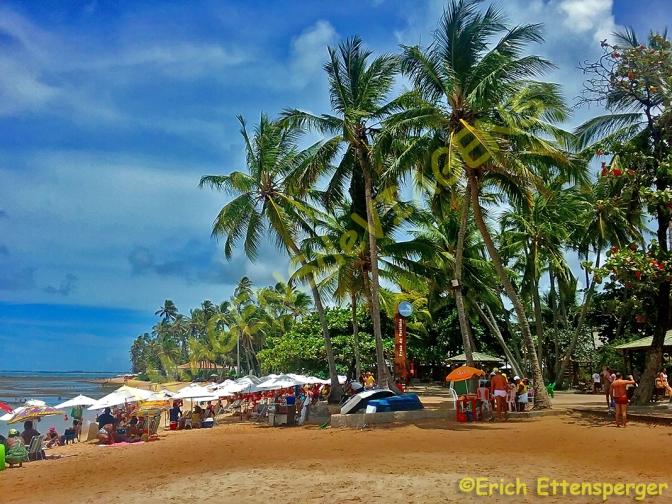 Praia do Forte, simpático destino nordestino/Praia do Forte, ein sympathisches Reiseziel im Nordosten Brasiliens/Praia do Forte, a friendly destination in the north-east of Brazil