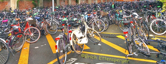 MÜNSTER – A CAPITAL DAS BICICLETAS DA ALEMANHA/MÜNSTER – DIE FAHRRADHAUPTSTADT DEUTSCHLANDS/MÜNSTER – THE BICYCLE CAPITAL OF GERMANY