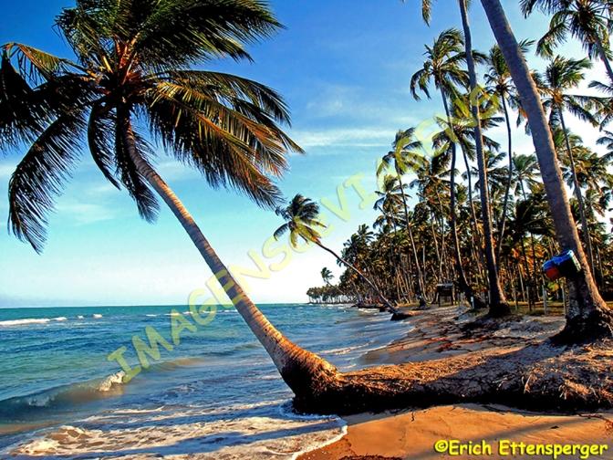 15 PRAIAS ESPETACULARES NO BRASIL/15 SPEKTAKULÄRE  STRÄNDE IN BRASILIEN/15 SPECTACULAR BEACHES IN BRAZIL