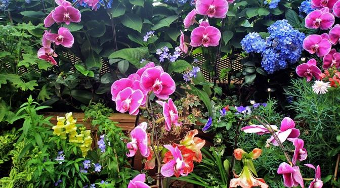 Cingapura, Domo das Flores e a Floresta Úmida/Singapur – der Blumen- und Regenwald-Dom/Singapore – the Flower Dome and Cloud Forest