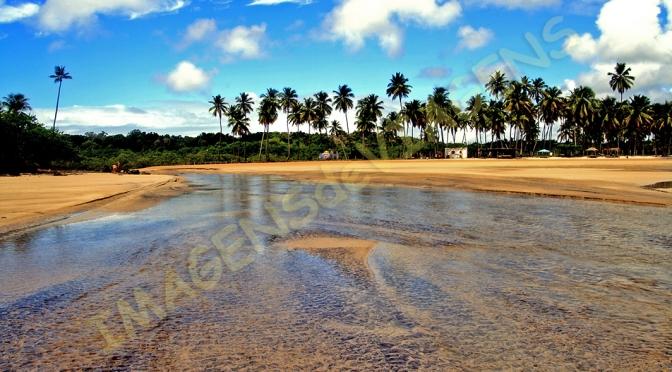 A verdejante Ilha de Boipeba (PARTE I)/Die grüne Insel Boipeba (TEIL I)/The green island of Boipeba (PART I)