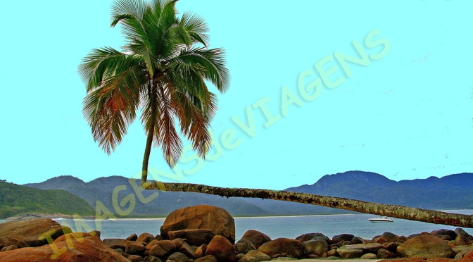 Paraty e Ilha Grande, ricas em biodiversidade e cultura/Paraty und die Insel Ilha Grande – reich an Artenvielfalt und Kultur/Paraty and the island of Ilha Grande – rich in biodiversity and culture