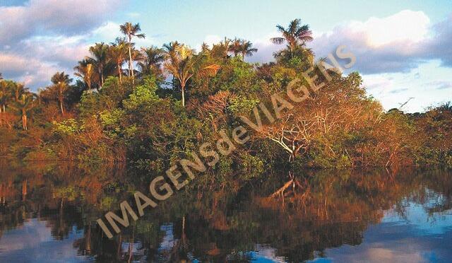 Bens Naturais Brasileiros tombados pela UNESCO/Von der UNESCO gelistete brasilianische Naturgüter/Brazilian natural assets listed by UNESCO