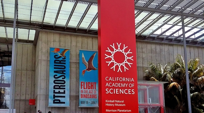 A Academia de Ciências da California/Die kalifornische Akademie der Wissenschaften/The California Academy of Sciences